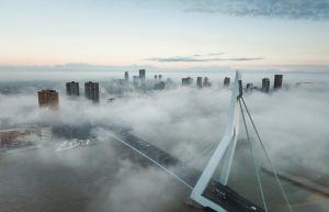 Rotterdam id mist - Peter Schmidt