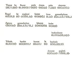 Specimen 20001